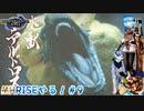【実況】MHRISEやる!【9】