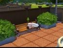 【The Sims4】ベンチで寝る悪人  [Part2]