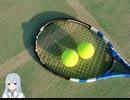 【歌ってみた】1/2の未来へ 轟レイ 新テニスの王子様【Cover by Yae】