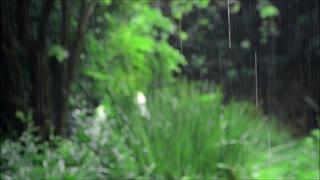 【KAITO V1】送り梅雨【オリジナル曲】