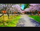 桜舞い散る桜並木に真っ赤な鳥居がとっても印象的だった件!!