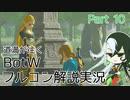 【Fate偽実況】道満が往くBotWフルコン解説実況 Part10