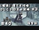 【解説実況】誰でも攻略出来るだけ解説する#40 白王の冠編3【Darksouls 2】