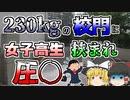 【ゆっくり解説】力いっぱい閉められた230kgの門に女子高生が挟まれ...『神戸高塚高等学校校門』