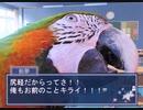 【実況】とり合い……?【鳥愛学園~鳥の取りあい~ 完】
