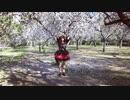 【レナ逢坂 】極楽浄土 を踊ってみた
