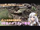 【ボイロ生物部】4年目のギフチョウ観察