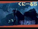 【MHRise】くにーるS 集会所最初の百竜夜行に挑む!