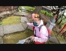【野田草履P】例の猫神社にて猫らと戯れていた模様。【ツイキャス】