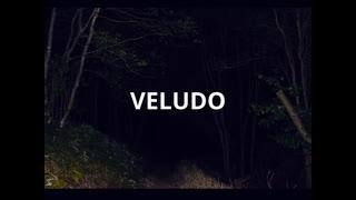 VELUDO / 初音ミク