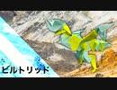 """【折り紙】「ビルトリッド」 19枚【足】/【origami】""""Biltrid"""" 19 pieces【tread】"""