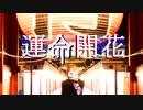 【実写MV】運命開花❄歌ってみた【黒紫雪】