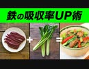 【後半】「鉄」を多く含む食品と吸収率がアップするおすすめの調理方法【ビーレジェンド プロテイン】