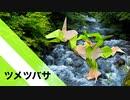 """【折り紙】「ツメツバサ」 21枚【爪】【翼】/【origami】""""Tumetsubasa"""" 21 sheets【Claws】【Wings】"""