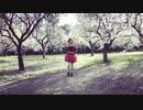 【レナ逢坂 】気まぐれメルシィ を踊ってみた
