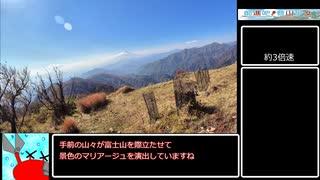 【リアル登山アタック】丹沢山RTA大倉尾根【ゆっくり】