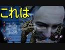 【PS4/レイス】