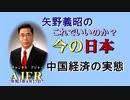 「中国経済の実態」矢野義昭 AJER2021.4.23(1)