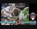 【閲覧注意】ゴミ屋敷を掃除しよう!きったない自室をガチ片づけ!