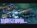【双剣第一】モンスターハンターRISE#18(特別許可試験アケノシルム&リオレイア)