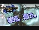【双剣第一】モンスターハンターRISE#20(里クエ★4トビカガチ)