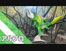 """【折り紙】「アルブロ」 16枚【龍】/【origami】""""Albro"""" 16 pieces【dragon】"""