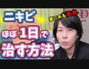 【YouTube100万再生】ニキビをほぼ一日で治す方法!知らないと損!