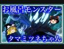 【モンスターハンター ライズ】ランス使って狩り狩られ Part8【ゆっくり実況】