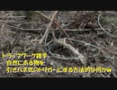 (トラップワーク雑学的な?w)引きバネ式くくりわなに使える、自然の物を使ったトリガーワーク的な何かw