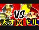 【第十四回】15人目の天才 VS ㌦ポッター【Aブロック第十試合】-64スマブラCPUトナメ実況-