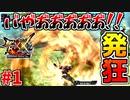 【MHXX】MHXX発狂シーン集#1