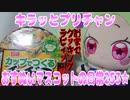 キラッとプリチャン~おすぬいマスコットの日常253★~