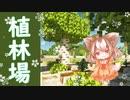 【マインクラフト】栗ほのくら#4 可愛い植林場をつくろうとしただけなんだ【ゆっくり実況】