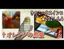 きのこハウスインコ#6★2021.6.4
