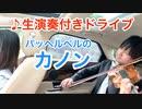 ヴァイオリン生演奏付きドライブ「パッヘルベルのカノン」