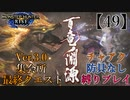 【MHRise】チャアク防具なし縛り実況『百竜ノ淵源』【49】