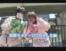 【 仮面ライアー217 生誕  】LIFE 【 踊ってみた  】