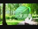 [オリジナル曲] 独りぼっちの夏模様 [重音テト]