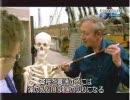 【ニコニコ動画】伝説の戦い トラファルガー海戦 2/2 ナポレオンを解析してみた