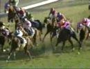 【競馬】第45回有馬記念 テイエムオペラオー(画質向上)
