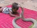 コブラ vs 赤ん坊