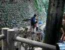 高崎山の猿の餌付け