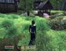 PCゲーム Oblivion ~暗殺の香り!事故死演出を殺り遂げろの巻①~