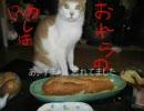【ニコニコ動画】【4匹と独りキッチン】巨大バゲットサンドを解析してみた