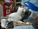 猫のせいでVS,~知覚と快楽の螺旋を弾きなおせなかった