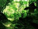【緑】綺麗な壁紙を集めてみた【黄】