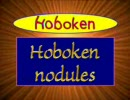 Dutch name pronunciation
