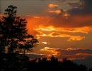 【夕焼】綺麗な壁紙を集めてみた【黄昏】