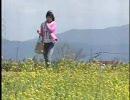 堀北真希 「その先の日本を見に。~少女と鉄道・2005年春~」part1