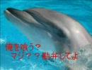 第10位:【お腹が】イルカの味噌煮作るに~【空いたので】 thumbnail